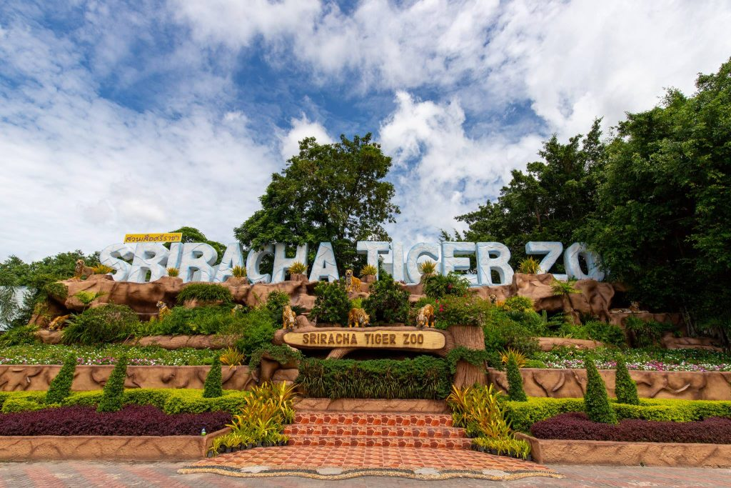 sriracha-tiger-zoo1